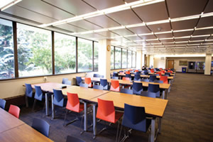 Adelphi University Acoustic Panels