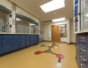 Science lab decorative flooring