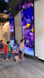 The district decided to install engaging digital displays in various locations throughout Sherlock School, including the main entrance and the 4th floor interactive space.